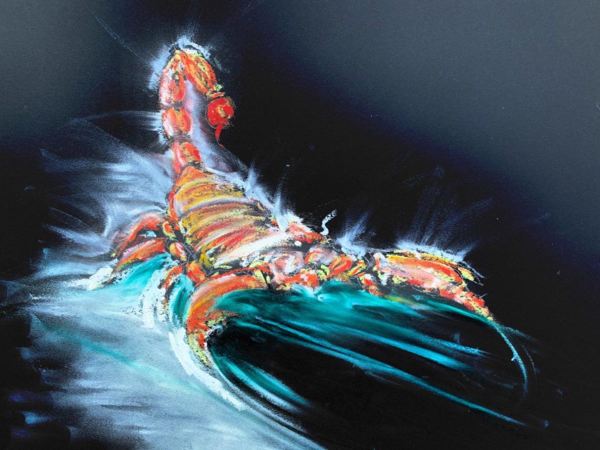 Der Skorpion – ca. 0.60m x 0.50m